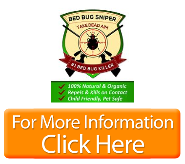 Organic bed bug killer spray trusted by the pros powerful formula